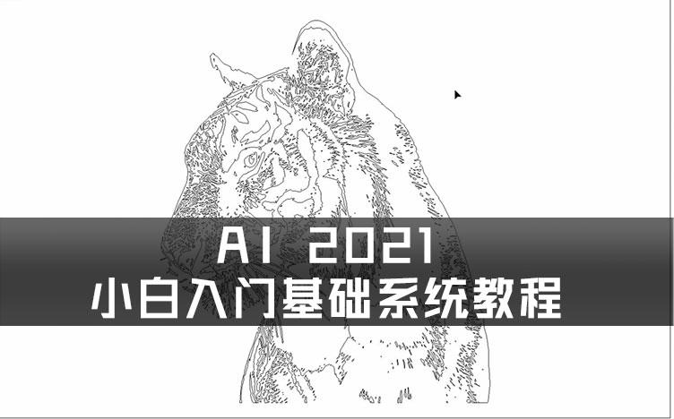 AI 2021-小白入门基础系统教程素材及工程